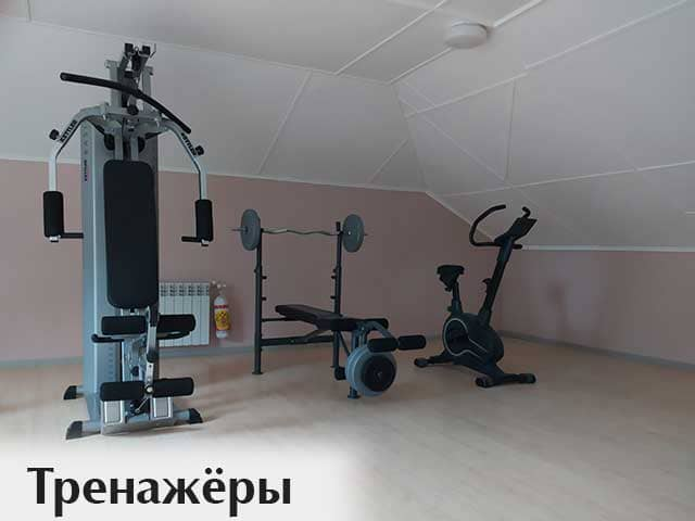 trenazhyory-i-sportivnye-snaryady